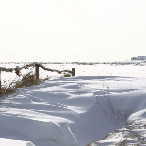 Schneepracht auf Langeness