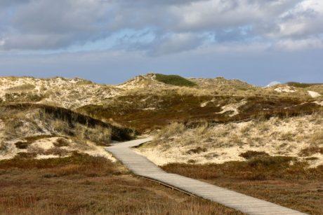 Schutz der Dünenlandschaft