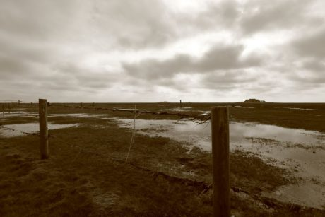 Spuren nach Landunter